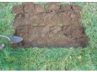 Top Soil - free to collect