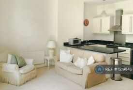 1 bedroom flat in Fulham Road, London, SW6 (1 bed) (#1219846)