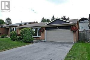 Available Now, NEW MARKET, 2 Bedrooms Huge Basement Newly Renov
