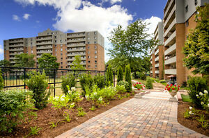 Pet friendly 1 & 2 bedroom apts! Come tour our units today! London Ontario image 11