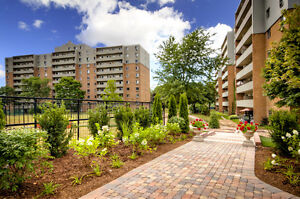 Come tour these amazing apts! Renovated 1 & 2 bedrooms! London Ontario image 11