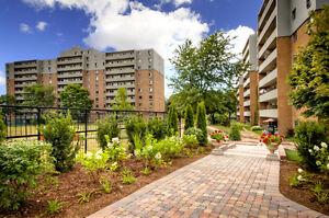 Auburn Park: Apartment for rent in Westmount London