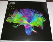 Muse Vinyl