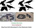 Crow Call CD