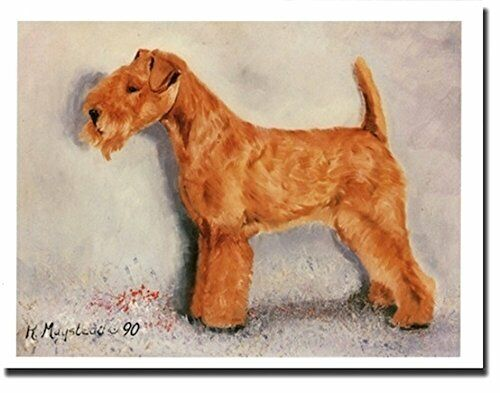 New Lakeland Terrier Dog Profile Notecards 6 Note Cards By Ruth Maystead LKT-1