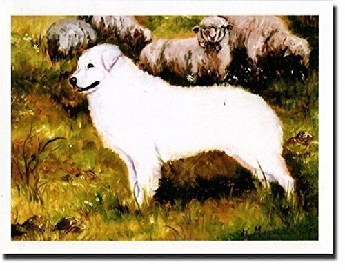 New Kuvasz Profile Notecards 12 Note Cards & 12 Envelopes By Ruth Maystead