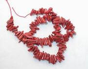 Red Coral Branch