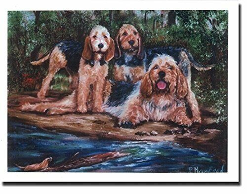 Otterhound Trio by Stream Notecards 6 Note Cards & 6 Envelopes By Ruth Maystead