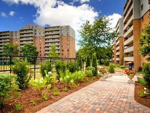 AUBURN PARK - NEWLY UPDATED ONE BEDROOM APARTMENT