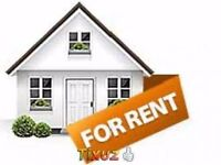 WANTED!!! 2/3 bedroom house to rent in NR29 area
