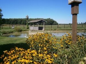 Picture Perfect Hobby Farm - Welcome to the Ranch