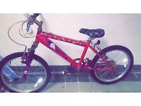Girls Bike 7+