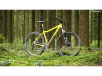 Trail-ready Mountain Bike, 120+mm forks, HT or HS, 29er or 27.5cm