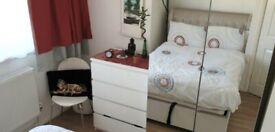 Bright Double Room In E13