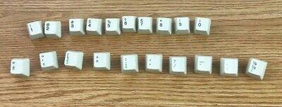 Function Key Lot 19 Replacement Part Ibm Wheelwriter 2 Electric Typewriter Oem