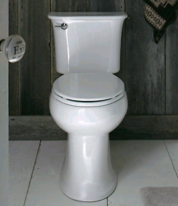Professional toilet repair and replacement