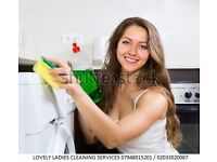 Lovely Ladies Cleaning Company