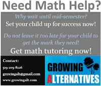 High School Math Tutoring