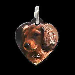 PERSONALISED PHOTO & PERSONALY DESIGNED PET TAGS. Banksia Grove Wanneroo Area Preview