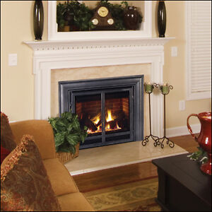 Selecting the right fireplace for your home Cambridge Kitchener Area image 1