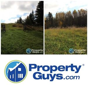 3.87 Acre Corner Country Lot