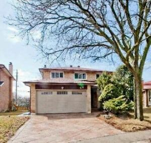 House for Rent In Toronto 4 Bed 4 Bath at Warden and Steeles