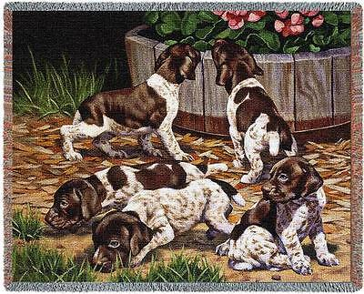 Throw Tapestry Afghan - German Shorthaired Pointer Pups by Bob Christie 3310