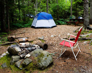 Camps ~ Only! $499/Year
