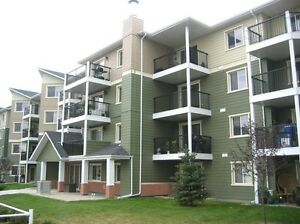 2 Bed 2 Bath condo in Terra Sol Court available now!