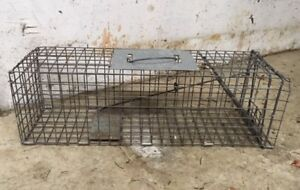 Havahart live animal trap