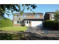5 bedroom house in Wilmington Close, Newcastle Upon Tyne, NE3 (5 bed)