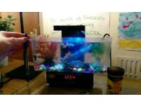 Small usb fish tank with a heater for sale