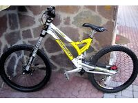 Ancillotti tomaso dhp downhill mountain bike frame