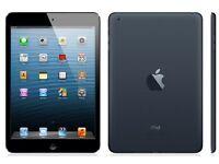 Apple iPad mini working perfect