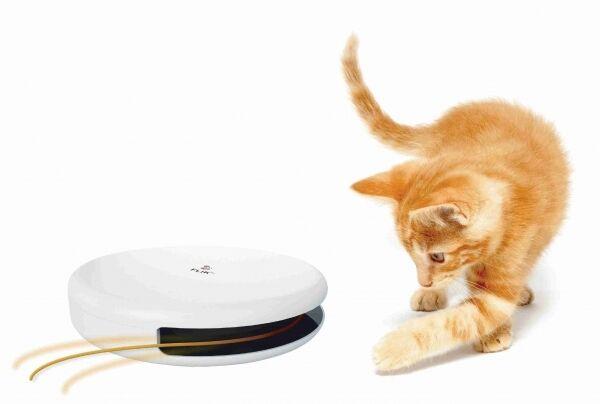 Frolicat Flik elektrisches Katzenspielzeug, automatisches Spielzeug für Katzen