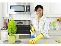 Domestic cleaner job wanted