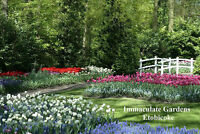 Lawn & Garden Maintenance, Landscaping & Snow Removal