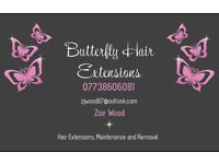 Hair Extensions from £200!