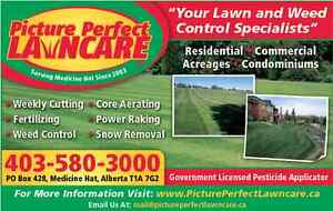 Spring & Summer Lawn Services