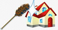Great house cleaning service