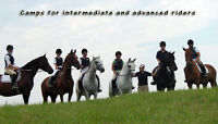 Summer Riding Camp - Aug 1st - 5th