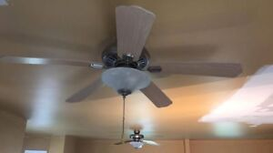 Ceiling Fan- Great condition!
