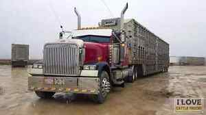 07 freightliner classic xl
