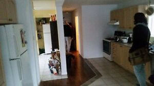 6 rooms avaiable for summer Sublet