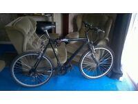 Phoenix pro bicycle