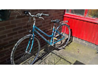 Claude Butler bicycle, never used. Bought Halford's. Good as new. Fully serviced before advertising