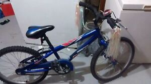 Hardly used Norco Viper