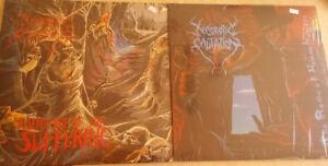 Deux vinyle de Necrotic Mutation ( Métal )