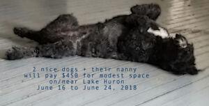 SEEKING DOG FRIENDLY VACATION NEAR/ON LAKE HURON