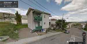 Duplexe confortable, idéal comme première maison Saguenay Saguenay-Lac-Saint-Jean image 2